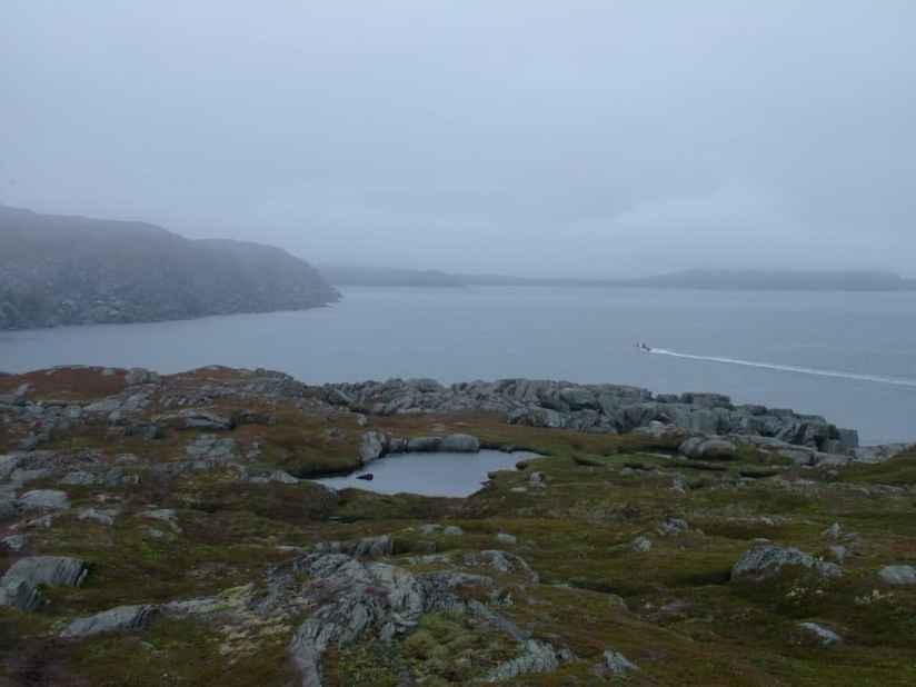 a boat off quirpon island, newfoundland, canada