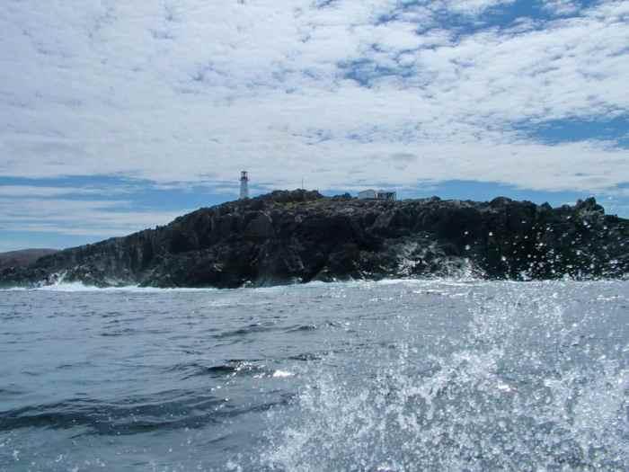 cape bauld, quirpon island, newfoundland, canada