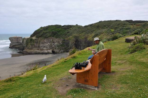 An image of Bob sitting on a park bench at Muriwai Regional Park in New Zealand.