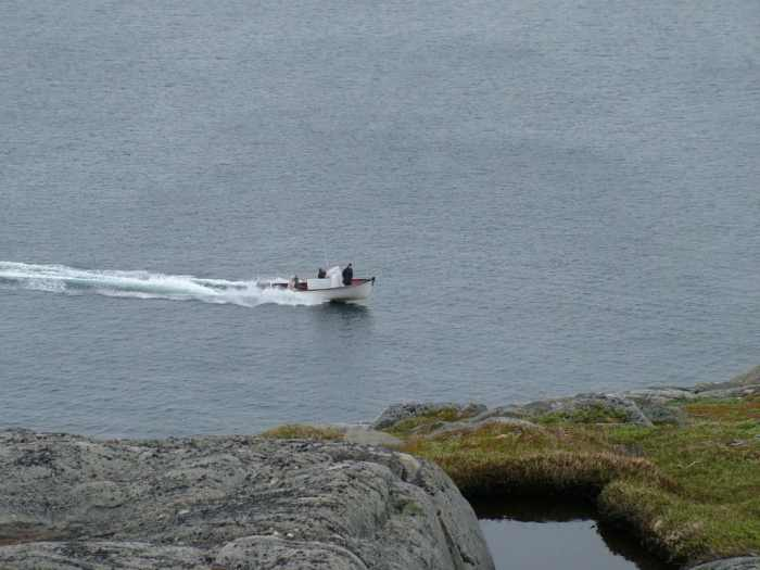 boat arriving at cape bauld, quirpon island, newfoundland, canada