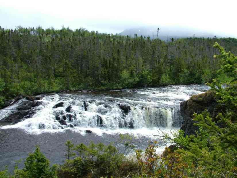 lower cascade of Baker's Brook Falls in gros morne national park, newfoundland