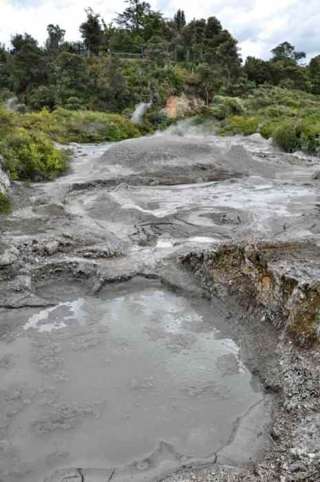 Image of Ngamokaiakoko Mud Pool at Te Puia Geothermal Preserve, Rotorua, New Zealand