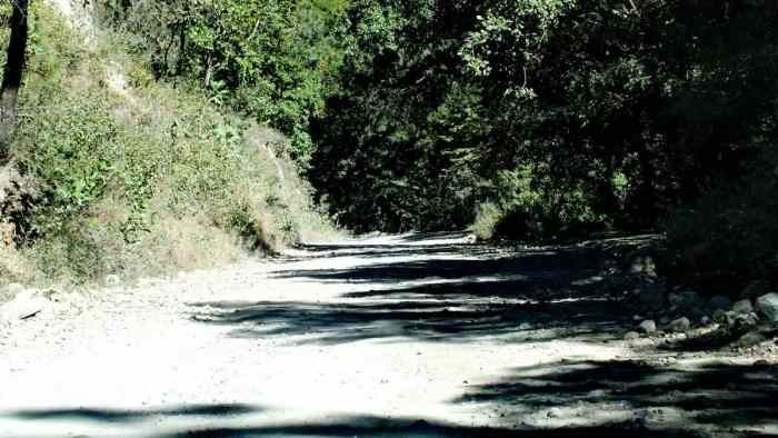 Dirt road at Cerro de San Juan Ecological Reserve, Mexico.