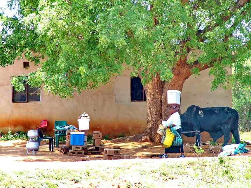 vendors under a shade tree in swaziland, africa