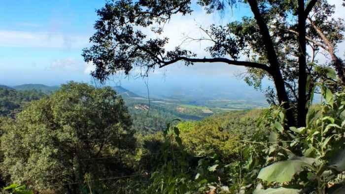 Mountain view in Cerro de San Juan Ecological Reserve, Mexico.