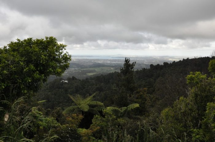 a view of auckland from karekare, north island, new zealand