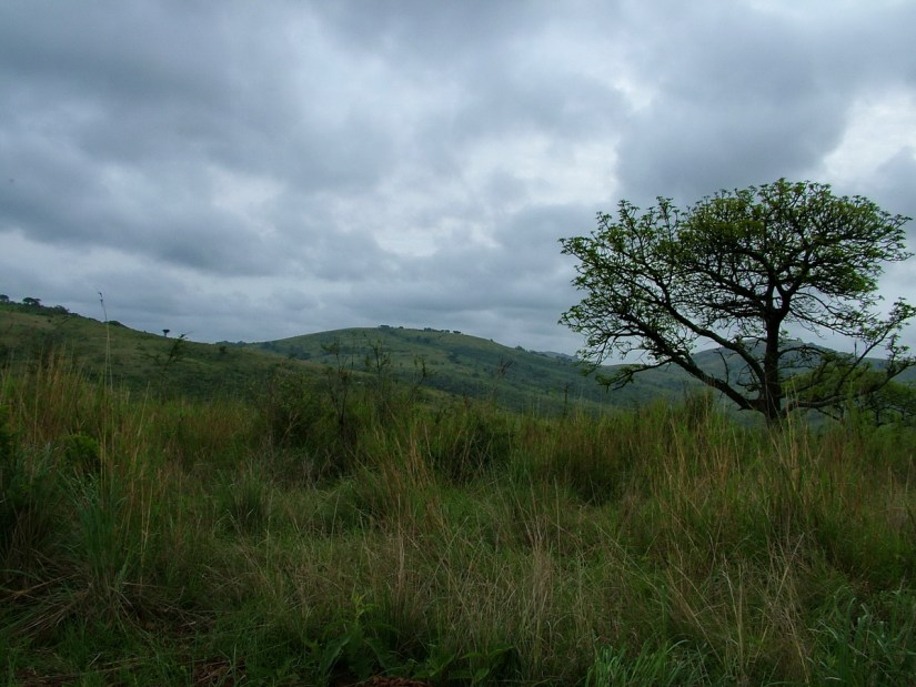 a stormy sky over hluhluwe-imfolozi, south africa