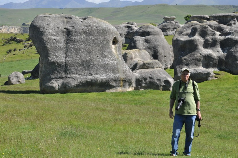bob in the pasture with elephant rocks, duntroon, new zealand