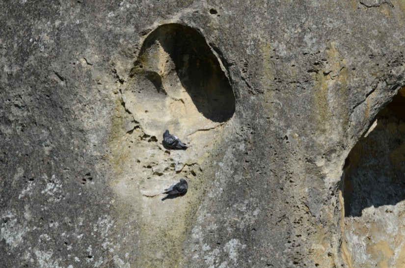a pocked limestone outcrop, elephant rocks, new zealand