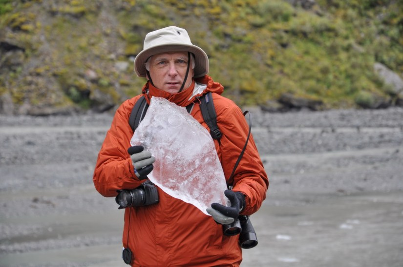 bob with ice from fox glacier, south island, new zealand