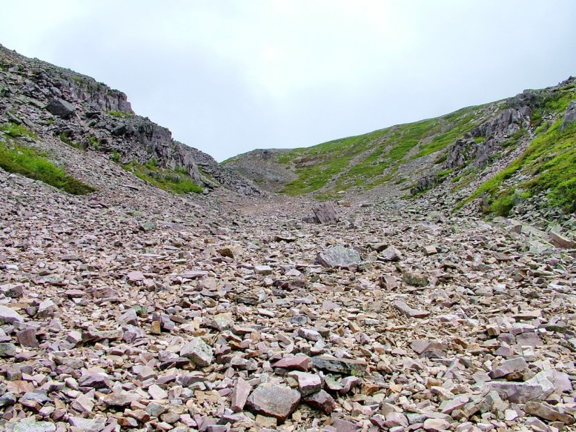 talus slope, the gully, gros morne mountain, newfoundland, canada