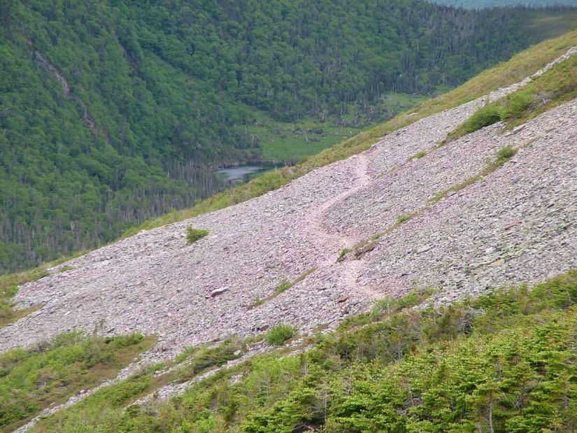 gros morne mountain trail, gros morne mountain, newfoundland, canada