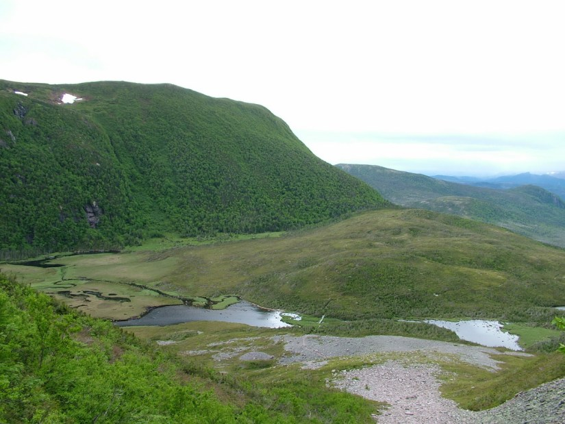 the ponds at the base of gros morne mountain, newfoundland, canada