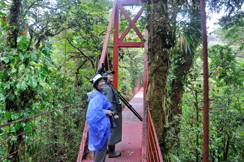 jean on the red hanging bridge, monteverde cloud forest preserve, costa rica