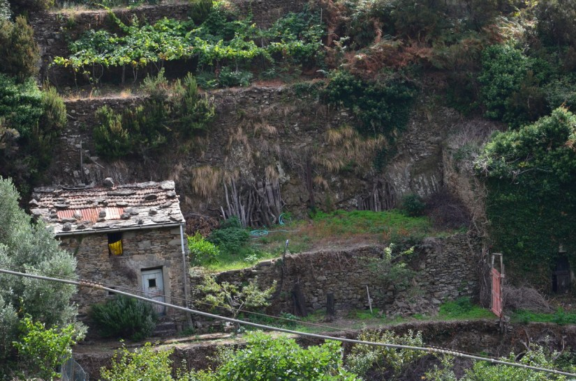 rustic stone shed, cinque terre italy