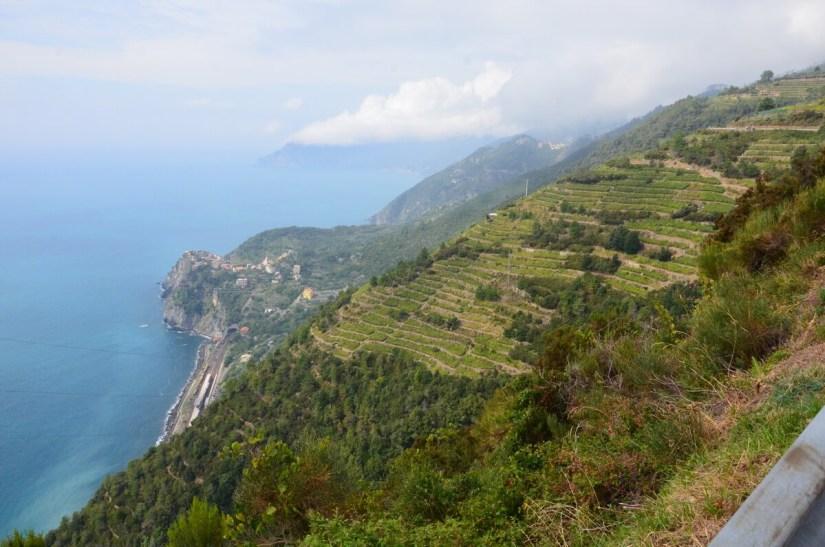 terraced slopes and corniglia, cinque terre, italy