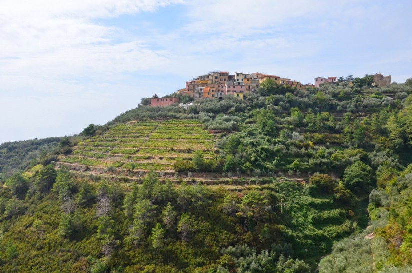 volastra, terraced mountain, cinque terre, italy