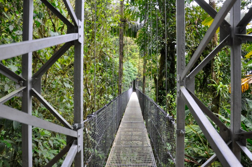 a hanging bridge, mistico arenal hanging bridges park, la fortuna, costa rica