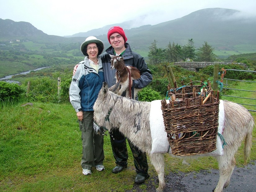 jean with a goatherd and his goat and donkey, killorglin, ring of kerry, ireland