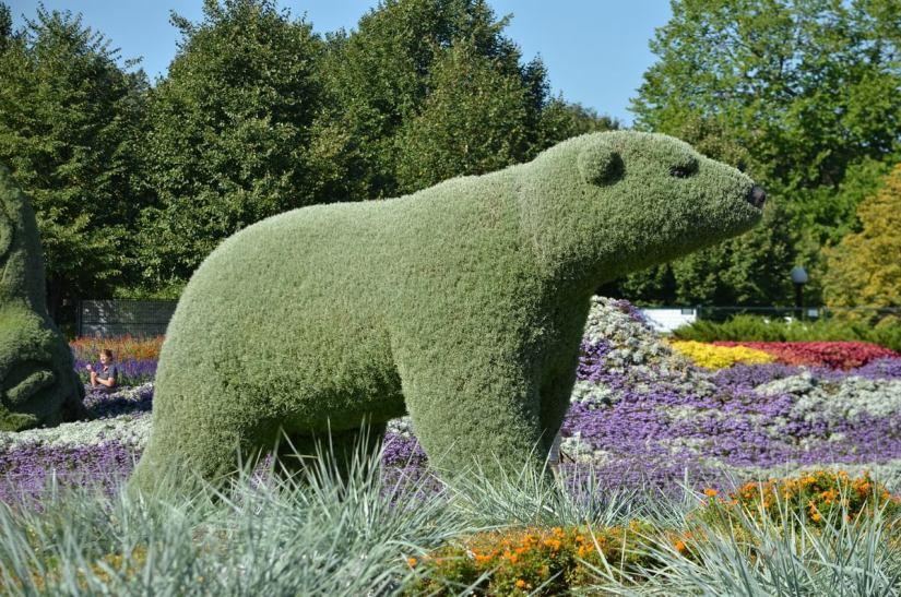 a polar bear, mosaiculture 2018, gatineau, quebec, canada