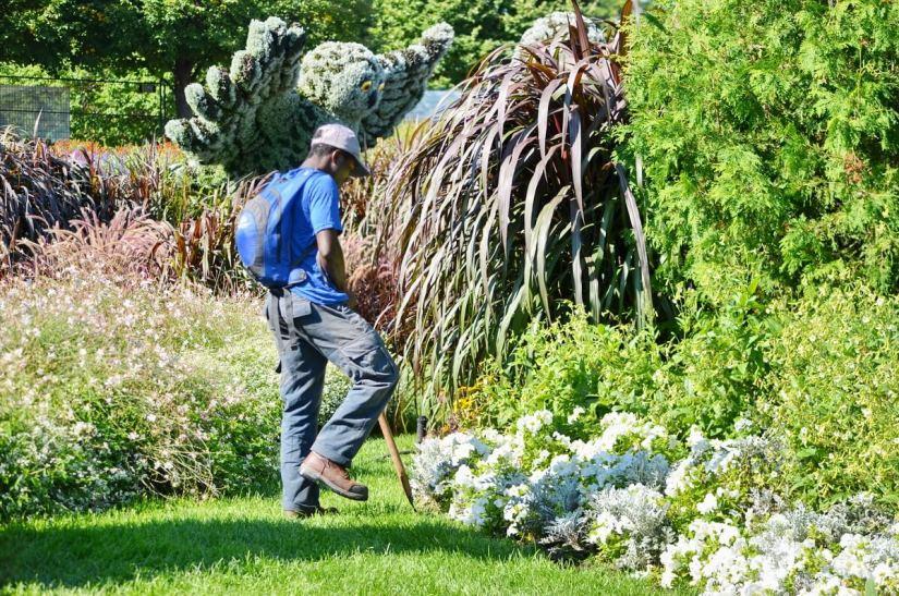 a gardener edging a garden, mosaiculture 2018, gatineau, quebec, canada