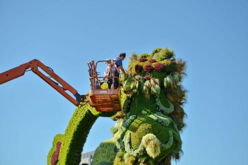 gardeners pruning a sculpture, mosaiculture 2018, gatineau, quebec, canada