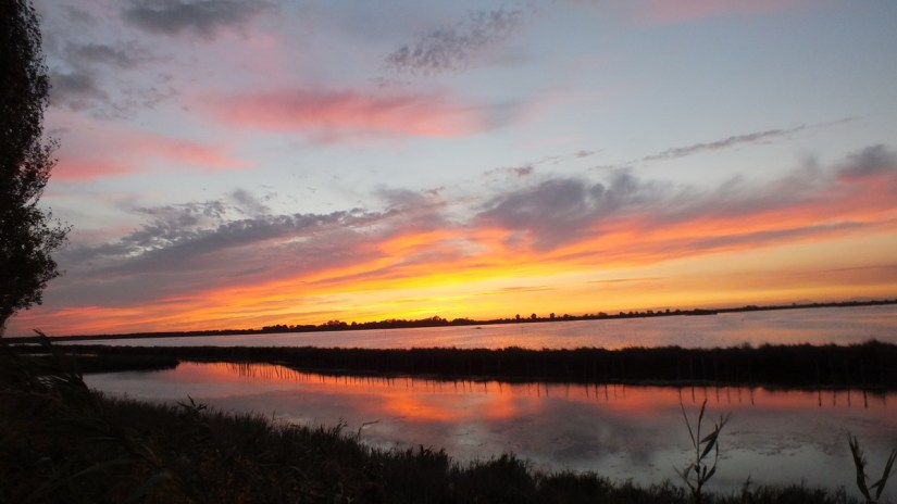 a sunset reflected in the wetlands, Parco Regionale Veneto del Delta del Po (The Regional Park of the Po River Delta), italy