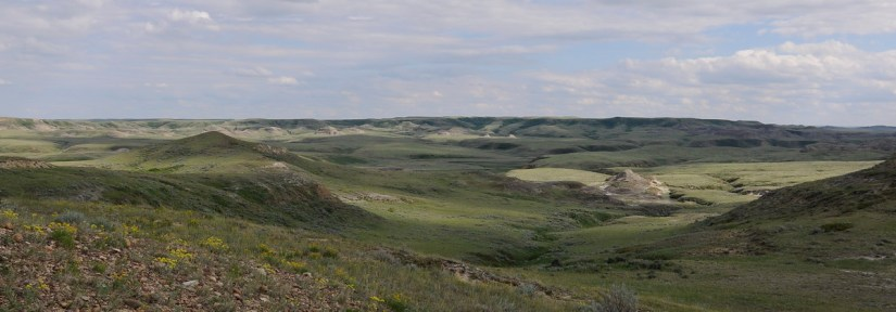 a coulee, badlands, valley of 1000 devils route, grasslands national park east block, saskatchewan