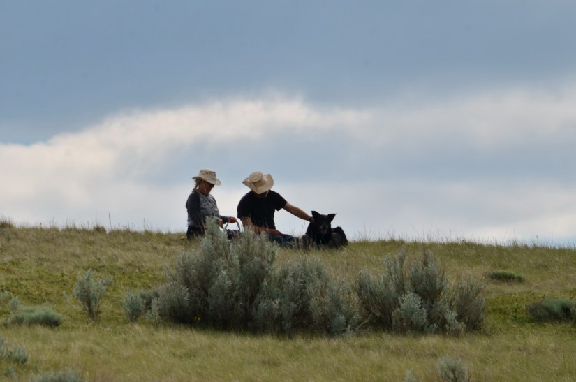 hikers with a dog, valley of 1000 devils route, grasslands national park east block, saskatchewan