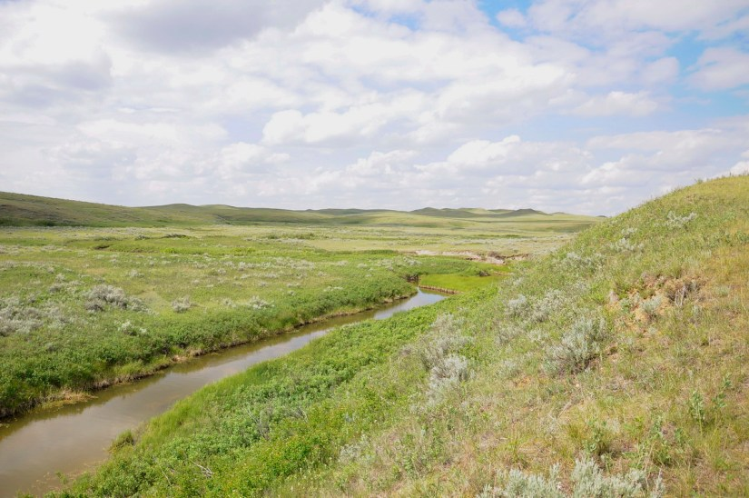 rock creek, valley of 1000 devils route, grasslands national park east block, saskatchewan