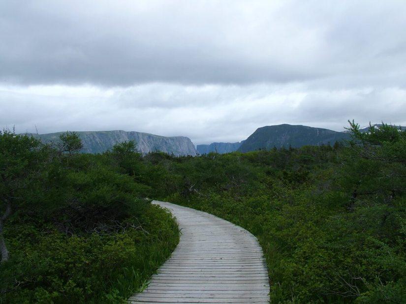 the trail to western brook pond, gros morne national park, newfoundland, canada
