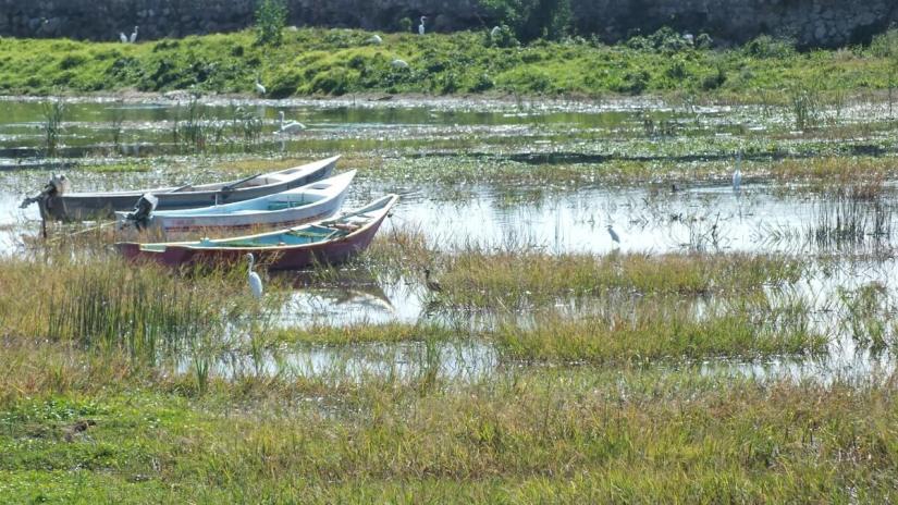 motorboats, lake chapala, mexico