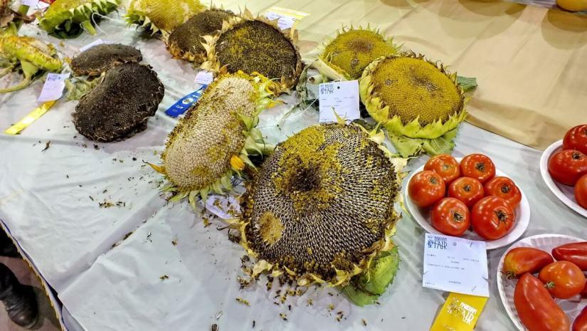 produce exhibit, markham fair, markham, ontario, 2012