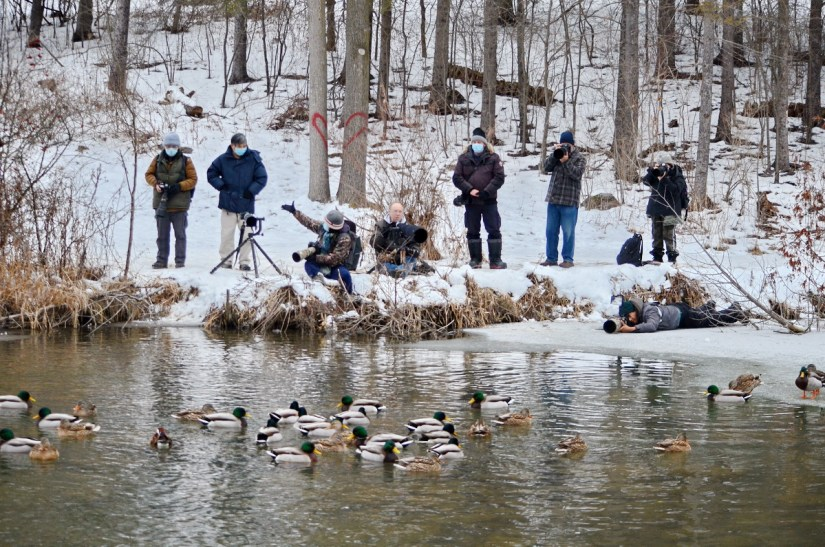 photographers, east holland river, newmarket, ontario