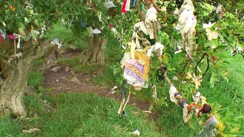 clotties, offerings, fairy tree of tara, ireland