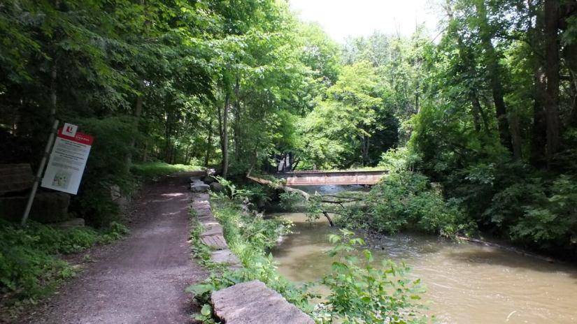 glendon forest trail, toronto, ontario