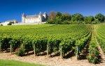 Tour to Burgundy, Beaune