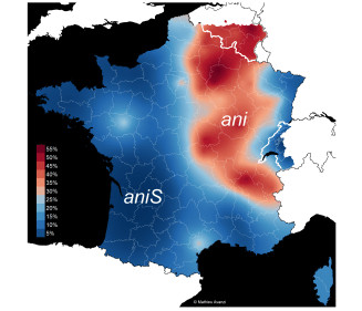 anis_vieux_label