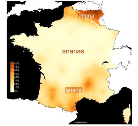ananas_with_label_all