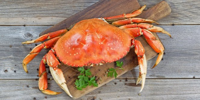 bienfait-crabe