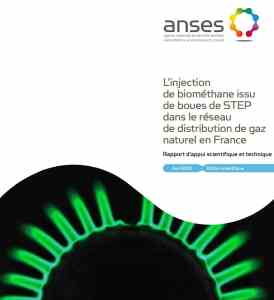 rapport-injectionANSES