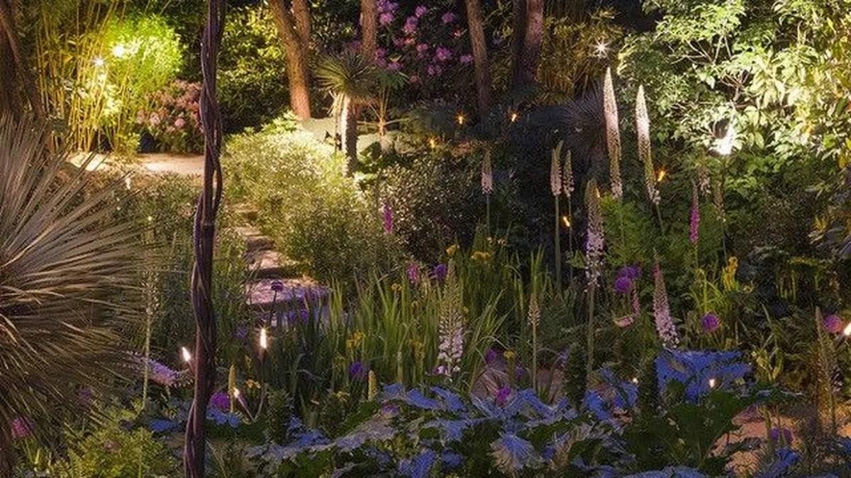 jardin agapanthe parmi les plus beaux