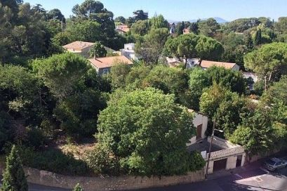 Le promoteur n'aurait mentionné qu'une vingtaine d'arbres dans sa première demande de permis de construire sur ces parcelles de la rue Fontcarrade.