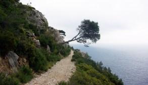 Calanques - Marseille