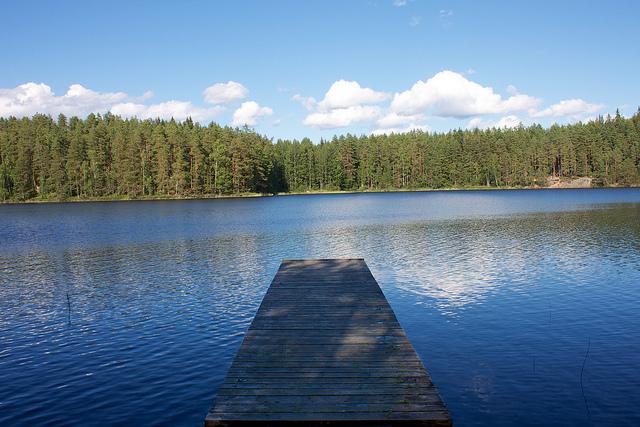View of lake at Repovesi