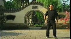 Maestro Lam Kam Chuen