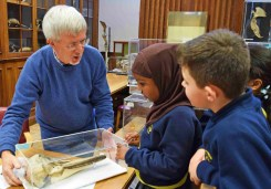 Prof. Phil Whitfield talking Dolphin