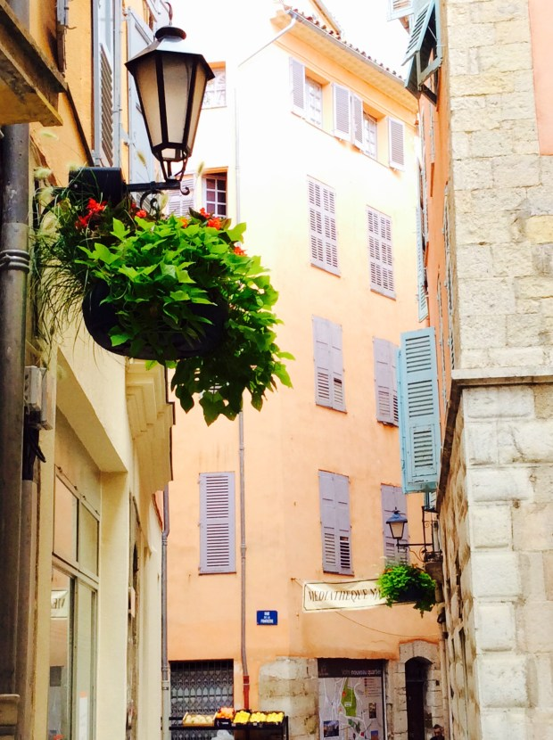 Flowers in Grasse in the street pictures