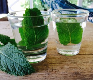 peppermint aromatic water for diy beauty recipes