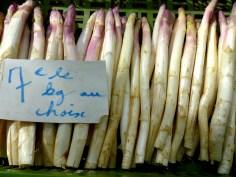 white asparagus bulk
